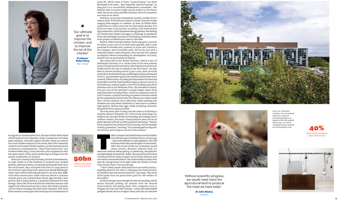 Financial Times Magazine double page Spread - The Chicken of The Future